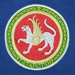 Вышивка государственной символики на футболках